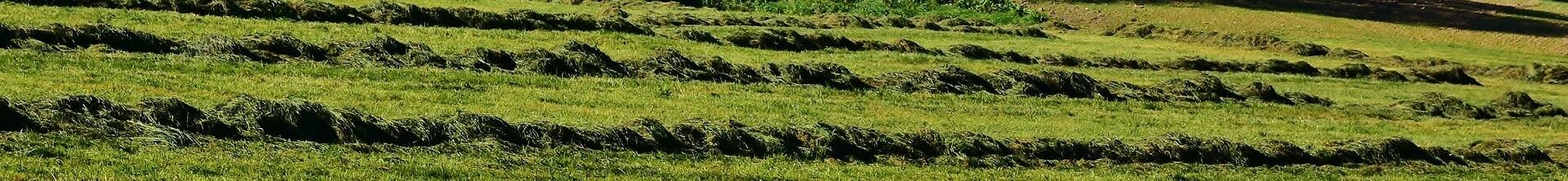 Landbouwfolie