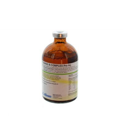 Vitamine b complex+ 100ml. regnl 120404