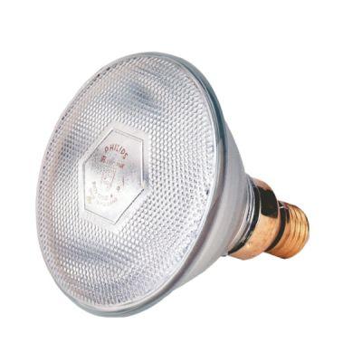 Warmtelamp Philips 100w. wit